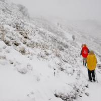 [爬山]雪訪嘉明湖…4從下雪到下雨的賦歸