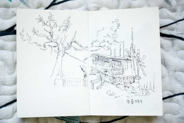 MINNAZOO_2455