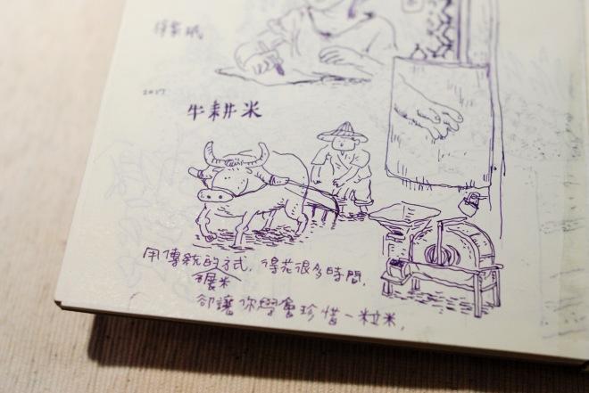 minnazoo_Guanxi-21
