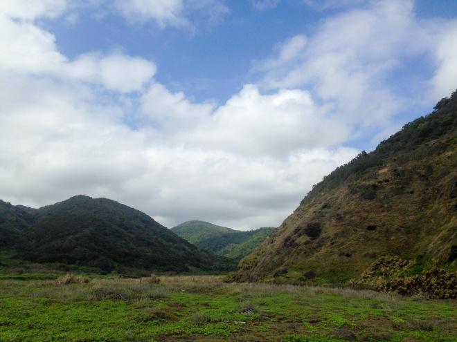 MINNAZOO_A_Long_Trail_Photo-2